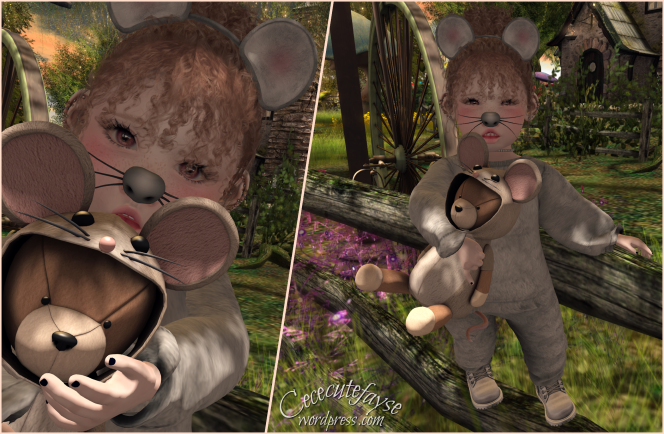Mouse Blog